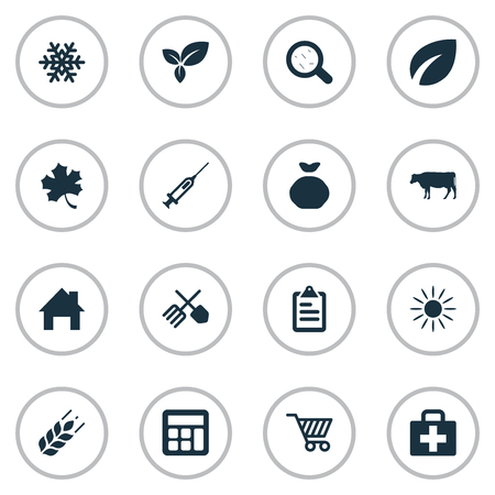 Vector Illustration Set Of Simple Harvest Icons. Elements Wheat, Leaves, List And Other Synonyms Snow, Bacterium And Aid.