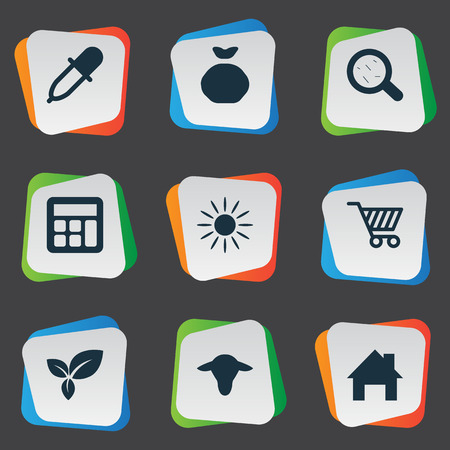 insolación: Vector Illustration Set Of Simple Agricultural Icons. Elements Buffalo, Calculator, Sunshine And Other Synonyms Insolation, Sunshine And Leaves. Vectores