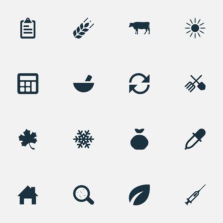 Vektor-Illustration Satz von einfachen Ernte Icons. Elements Sack, Taschenrechner, Spritze und andere Synonyme Daten, Dropper And Leaf. Standard-Bild - 75443347