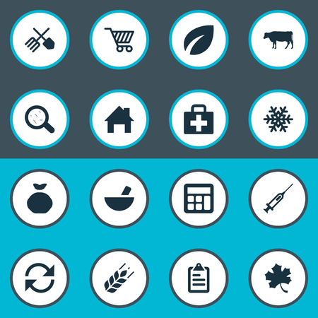 Vector Illustration Set Of Simple Agricultural Icons. Elements Leaf, Calculator, Sack And Other Synonyms Remedy, Information And Math.