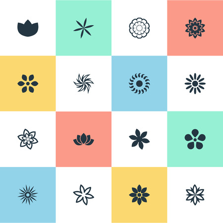 aster: Vector Illustration Set Of Simple Blossom Icons. Elements Gerberas;, Camomile, Water Lily; And Other Synonyms Floral, Lily And Natural. Illustration
