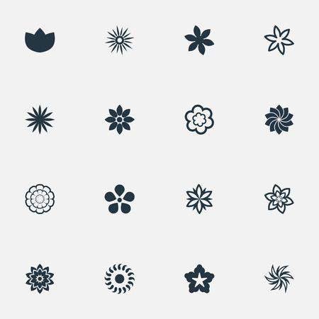 Vector Illustration Set Of Simple Blossom Icons. Elements Gerberas;, Narcissus, Camomile And Other Synonyms Saffron, Morning Glory And Water Lily. Иллюстрация