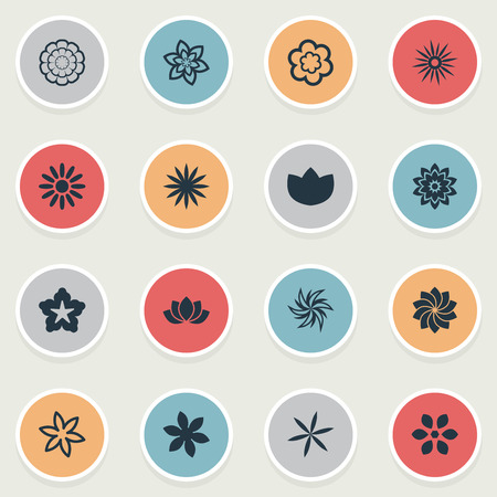 Vector Illustration Set Of Simple Flower Icons. Elements Camomile, Aster, Lilac And Other Synonyms Cypress, Pattern And Rose.