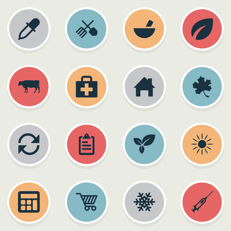 winter wheat: Vector Illustration Set Of Simple Agricultural Icons. Elements Calculator, Leaves, Ranch Home And Other Synonyms Recycle, Vaccine And Sunshine.
