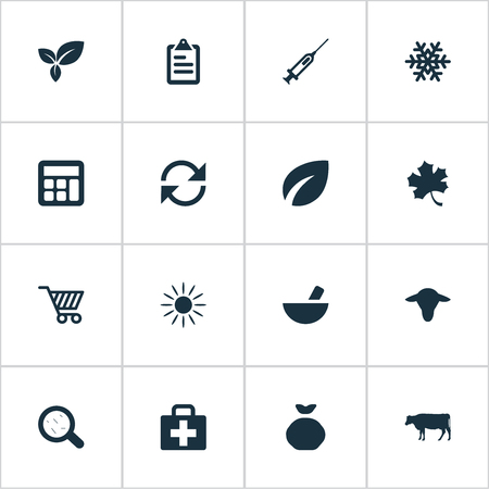 Vector Illustration Set Of Simple Harvest Icons. Elements Syringe, Medicament, Leaves And Other Synonyms Leaf, Remedy And Medicament.