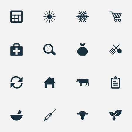 Vector Illustration Set Of Simple Agricultural Icons. Elements Cow, Sack, Sunshine And Other Synonyms Small, Drug And Calculator. Иллюстрация