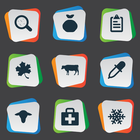 Vector Illustration Set Of Simple Agriculture Icons. Elements Pipette, List, Sack And Other Synonyms Cattle, Medicine And Buffalo. Illustration