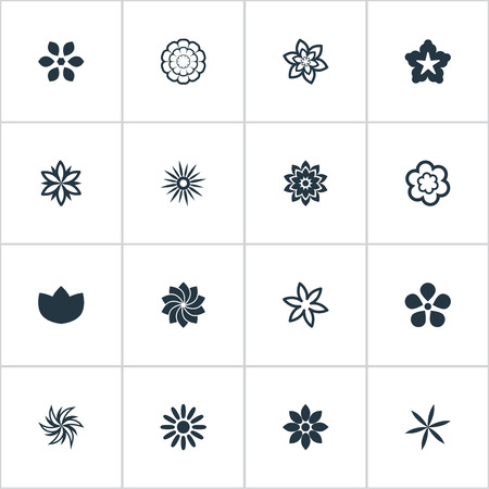 Vector Illustration Set Of Simple Rose Icons. Elements Crocus, Helianthus, Delphinium And Other Synonyms Laurel, Ranunculus And Marigold. Illustration