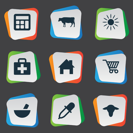 insolación: Vector Illustration Set Of Simple Agriculture Icons. Elements Medicament, Calculator, Medical Kit And Other Synonyms Small, Insolation And Local.