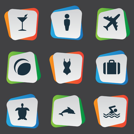 Illustration Set Of Simple Seaside Icons Elements Male, Suitcase, Airplane And Other Synonyms Bikini, Tortoise And Suitcase.