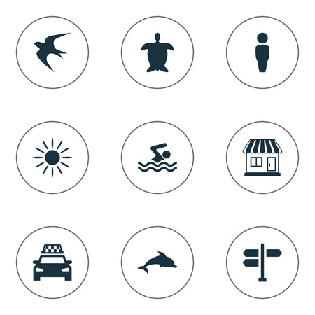 Vector Illustration Set Of Simple Beach Icons. Elements Taxi, Swimming Man, Tortoise And Other Synonyms Aquatic, Man And Direction. Illustration