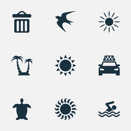 Vector Illustration Set Of Simple Beach Icons. Elements Swallow, Sun, Palm And Other Synonyms Sunshine, Taxi And Palm.