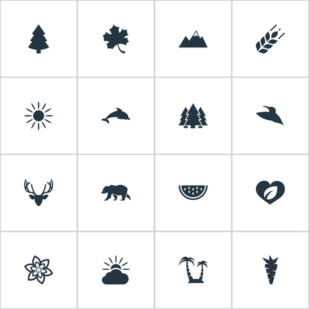 Vector Illustration Set Of Simple Nature Icons. Elements Pinnacle, Reef, Polar Bear And Other Synonyms Wing, Watermelon And Sunrise. Illustration