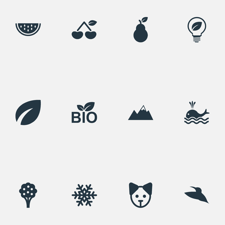Vector Illustration Set Of Simple Nature Icons Stock Vector - 82343114