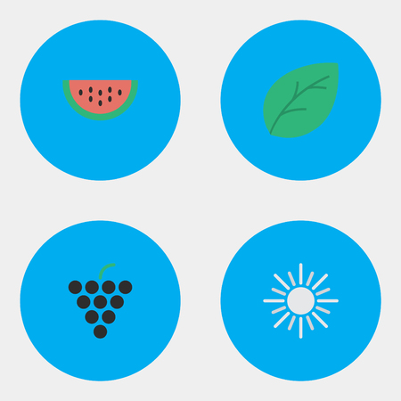 Vector Illustration Set Of Simple Horticulture Icons. Elements Sheet, Sun, Melon And Other Synonyms Leaflet, Grape And Sun.