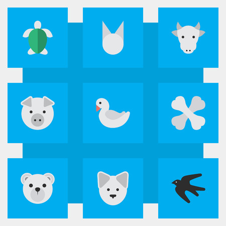 Vector Illustration Set Of Simple Animals Icons. Elements Wolf, Turtle, Skeleton And Other Synonyms Tomcat, Swine And Dog.