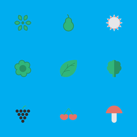 Vector Illustration Set Of Simple Gardening Icons. Elements Fungus, Berry, Wood And Other Synonyms Bloom, Fungus And Flower.