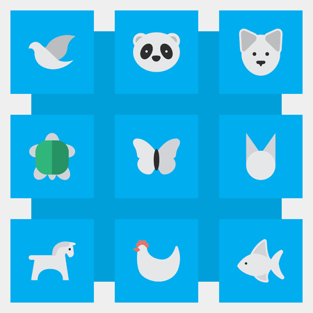 Vector Illustration Set Of Simple Animal Icons. Elements Pigeon, Wolf, Moth And Other Synonyms Perch, Tortoise And Butterfly.