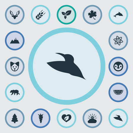 Vector Illustration Set Of Simple Geo Icons. Elements Polar Bear, Pinnacle, Plant And Other Synonyms Flower, Diver And Cloud.