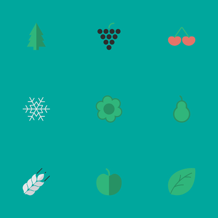 Vector Illustration Set Of Simple Garden Icons. Elements Wine, Sheet, Fruit And Other Synonyms Corn, Tree And Leaflet.
