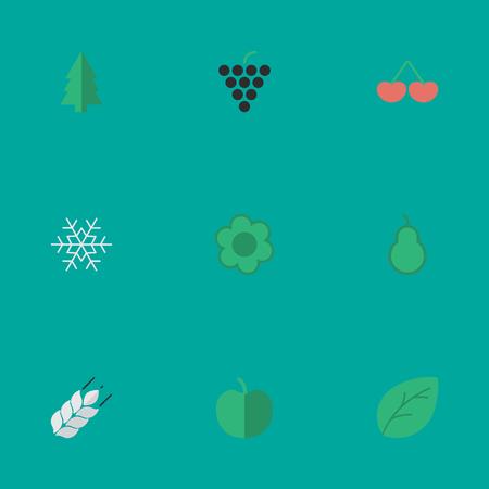 Vektor-Illustration Satz einfache Garten-Ikonen. Elemente Wein, Blatt, Obst und andere Synonyme Mais, Baum und Leaflet. Standard-Bild - 82618892