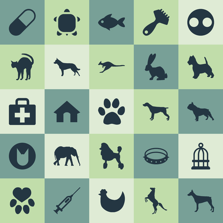 Elements First Aid, Safari, Hound And Other Synonyms Bulldog, Curly And Tortoise.  Vector Illustration Set Of Simple Wild Icons.