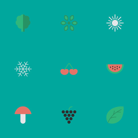 Vector Illustration Set Of Simple Garden Icons. Elements Fungus, Blossom, Sun And Other Synonyms Pot, Watermelon And Fruit.