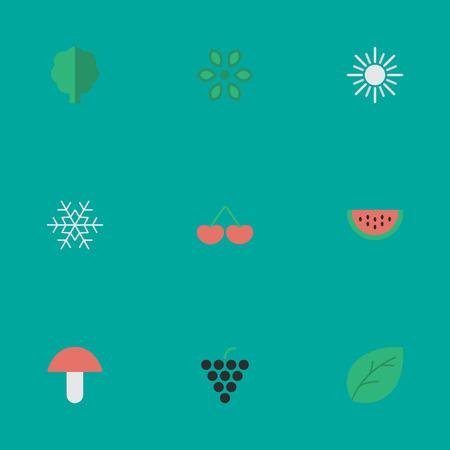 Vektor-Illustration Satz einfache Garten-Ikonen. Elemente Pilz, Blüte, Sonne und andere Synonyme Topf, Wassermelone und Obst. Standard-Bild - 82750984