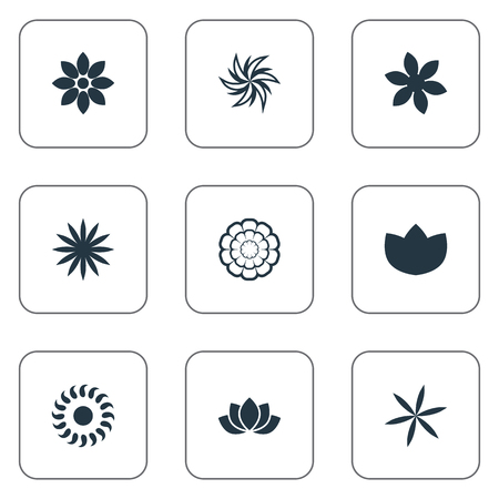 Vector Illustration Set Of Simple Blossom Icons. Elements Gerberas;, Laurel, Saffron And Other Synonyms Marguerite, Natural And Peonies. Ilustracja
