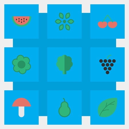 Vector Illustration Set Of Simple Gardening Icons. Elements Berry, Flower, Punching Bag And Other Synonyms Grape, Melon And Fruit.