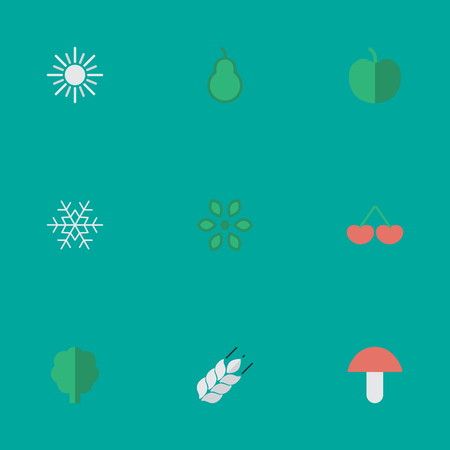 Vector Illustration Set Of Simple Garden Icons. Elements Berry, Punching Bag, Fruit And Other Synonyms Snow, Berry And Tree.