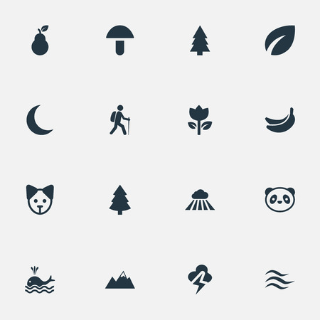 Vectorillustratiereeks Eenvoudige Ecologiepictogrammen. Elements Leafage, Lightning, Tropical Fruit And Other Synoniemen Thunder, Cloud And Lightning.
