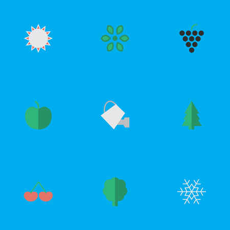 Vector Illustration Set Of Simple Gardening Icons. Elements Blossom, Flake Of Snow, Wood And Other Synonyms Snowflake, Apple And Grape. Illustration