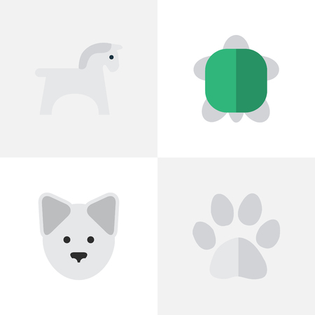 Vector Illustration Set Of Simple Wild Icons. Elements Tortoise, Foot, Steed And Other Synonyms Footprint, Pet And Paw.