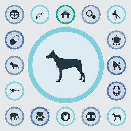 벡터 일러스트 레이 션 간단한 동물 군 아이콘의 집합입니다. 요소 원, 곱슬 강아지, 거북이 및 기타 동의어 아프리카, 점 및 애완 동물.