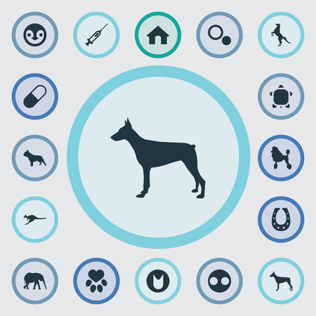 Vector Illustration Set Of Simple Fauna Icons. Elements Circle, Curly Puppy, Tortoise And Other Synonyms African, Dots And Pet. Illustration
