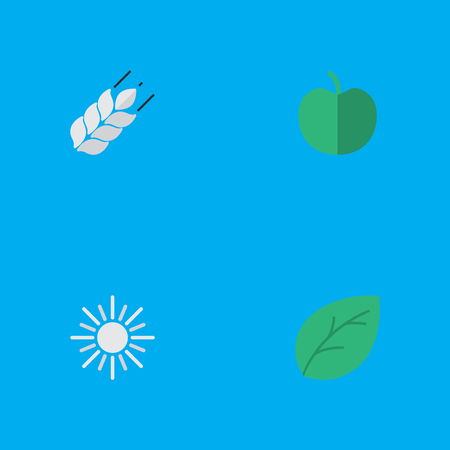 Vector Illustration Set Of Simple Garden Icons. Elements Sun, Sheet, Corn And Other Synonyms Hot, Fruit And Tree.