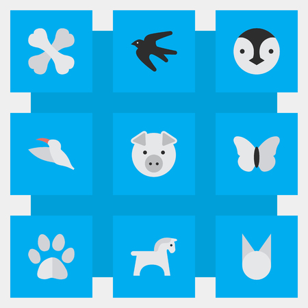 要素の飛べない鳥、スズメ、スティード、他類義語鳥雀と食品。 単純な動物アイコンのベクター イラスト セット。