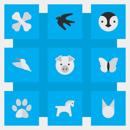Elements Flightless Bird, Sparrow, Steed And Other Synoniemen Bird, Sparrow And Food. Vectorillustratiereeks Eenvoudige Faunapictogrammen. Stock Illustratie
