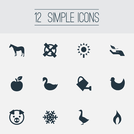 Elements Plant, Fruit, Grinder And Other Synonyms Swine, Environment And Sunflower.  Vector Illustration Set Of Simple Nature Icons. Ilustrace