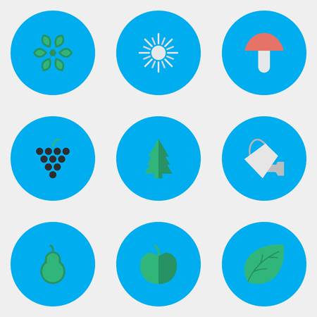 Vector Illustration Set Of Simple Gardening Icons. Elements Fruit, Punching Bag, Sheet And Other Synonyms Blossom, Bailer And Mushroom.