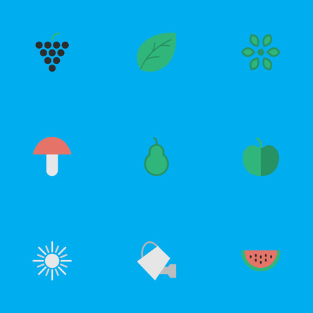 Vector Illustration Set Of Simple Gardening Icons. Elements Fruit, Bailer, Sheet And Other Synonyms Berry, Paper And Flower. Illustration