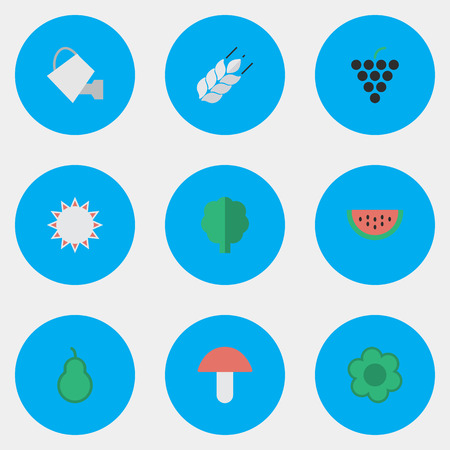 Vector Illustration Set Of Simple Gardening Icons. Elements Wine, Fungus, Corn And Other Synonyms Punching, Pear And Mushroom. Illustration