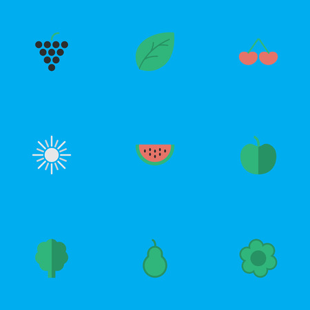 Elements Wood, Sun, Berry And Other Synonyms Punching, Wood And Sunny.  Vector Illustration Set Of Simple Garden Icons.