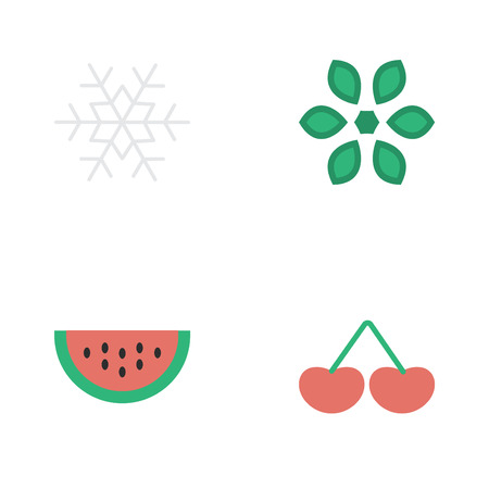 Elements Blossom, Melon, Berry And Other Synonyms Snowflake, Melon And Snow.  Vector Illustration Set Of Simple Garden Icons.
