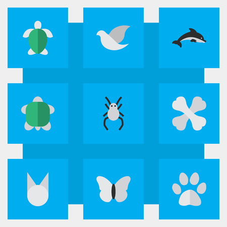 単純な動物園アイコンのベクター イラスト セット。要素亀、亀、ピジョン、他の同義語未亡人クモと昆虫。