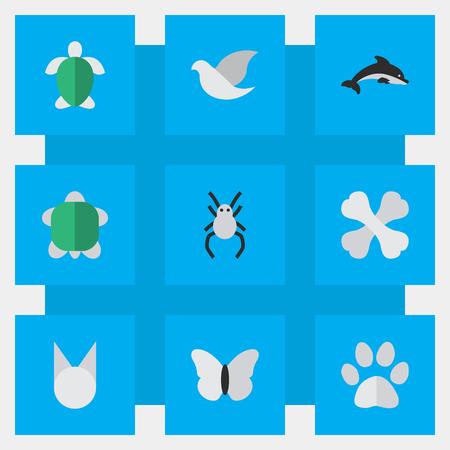 Vectorillustratiereeks Eenvoudige Dierentuinpictogrammen. Elementen Schildpad, Schildpad, Duif En Andere Synoniemen Weduwe, Spin en Insect. Stock Illustratie