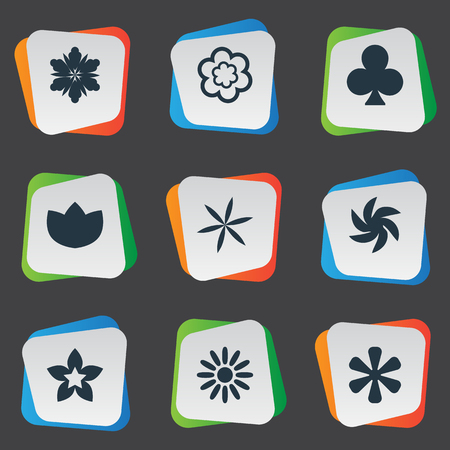 Vector Illustration Set Of Simple  Icons. Elements Sword Lily, Helianthus, Lucky Leaf And Other Synonyms Floral, Flower And Ranunculus.