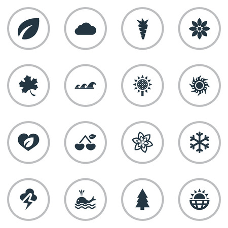 Vector Illustration Set Of Simple Bio Icons. Elements Sea, Bloom, Fir Tree And Other Synonyms Soul, Wave And Ocean. Ilustração