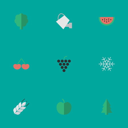 Vector Illustration Set Of Simple Horticulture Icons. Elements Melon, Wine, Bailer And Other Synonyms Snowflake, Grape And Wheat.